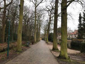Aannemingsbedrijf Fronik Infra B.V. in Mijdrecht, Oegstgeest, Herinrichting Wilhelminapark, Endergeesterlaan