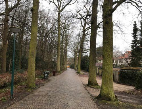 Oegstgeest, Herinrichting Wilhelminapark, Endergeesterlaan